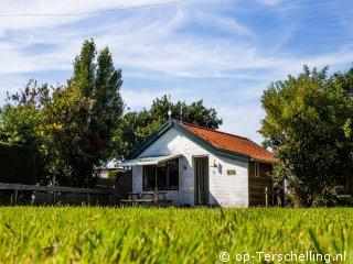 Fins Vakantie Huis : Vakantiehuis de fin bij midsland op terschelling