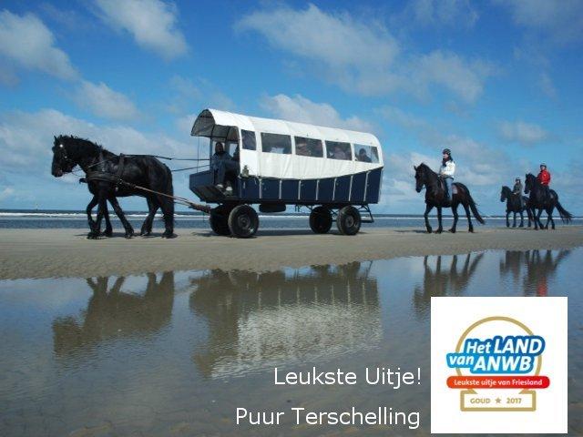 437e2251cd3 900+ Vakantieverblijven op Terschelling | vakantiehuis, appartement ...